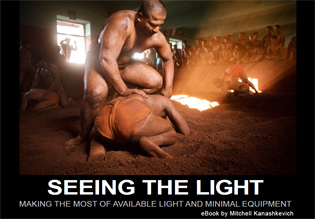 seeing the light ebook